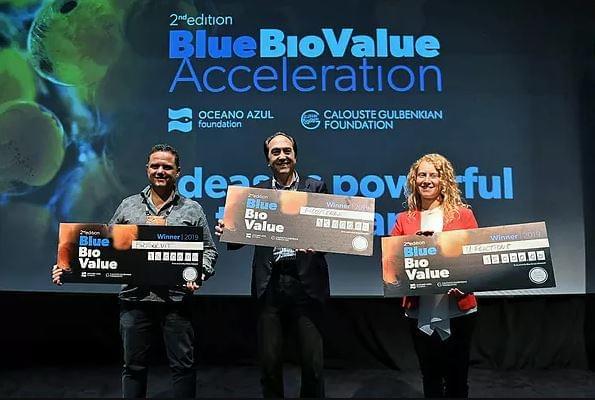 Biosolvit, startup que recolhe petróleo derramado, ganha prêmio em Portugal